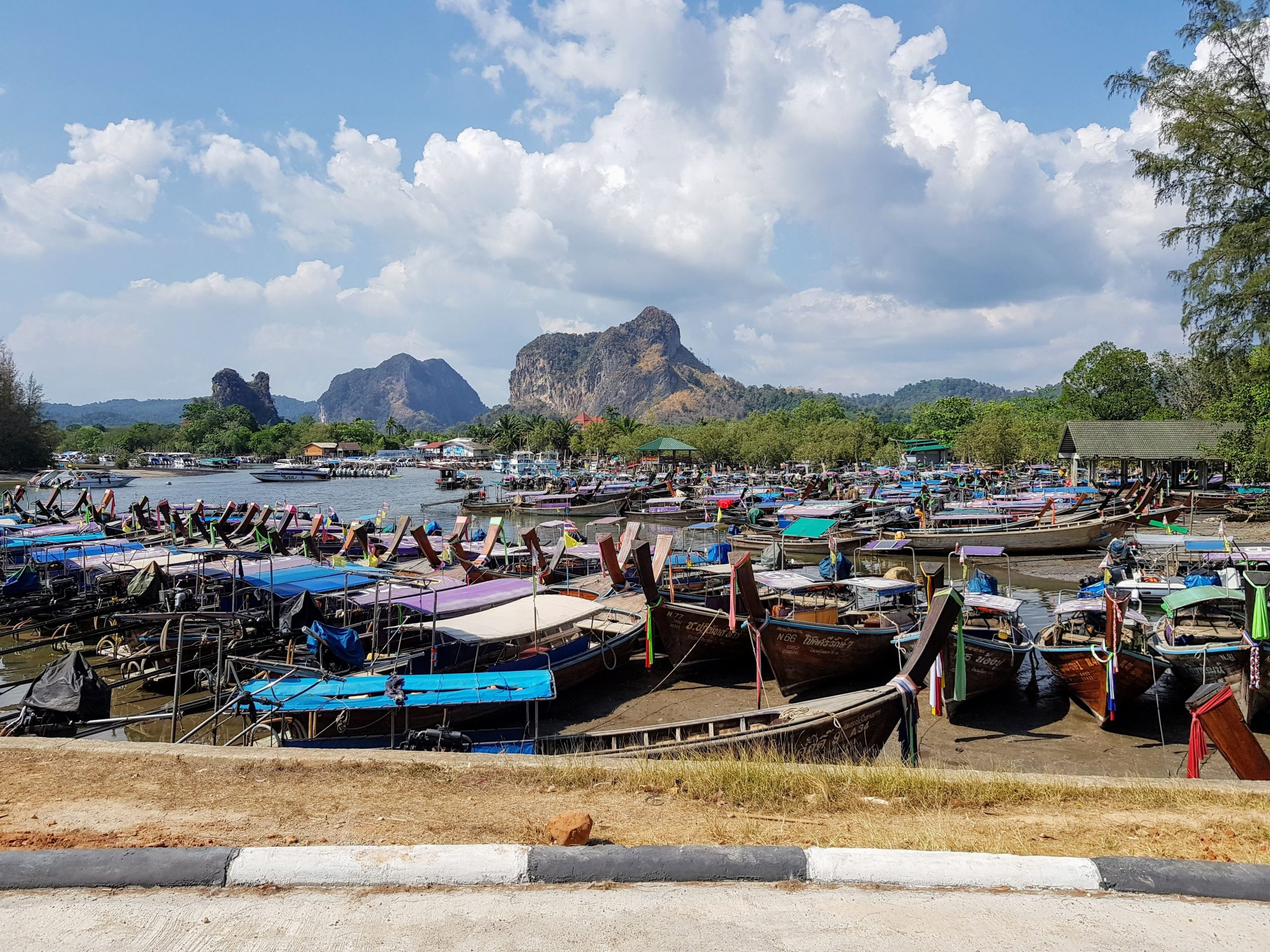all tourist boats docked